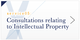 Consultations relating to Intellectual Property